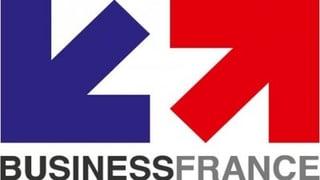 Logo Businessfrance